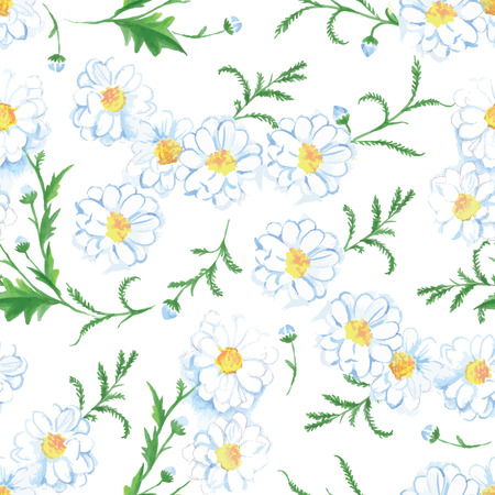 german chamomile: White chamomile summer flowers seamless vector print Illustration