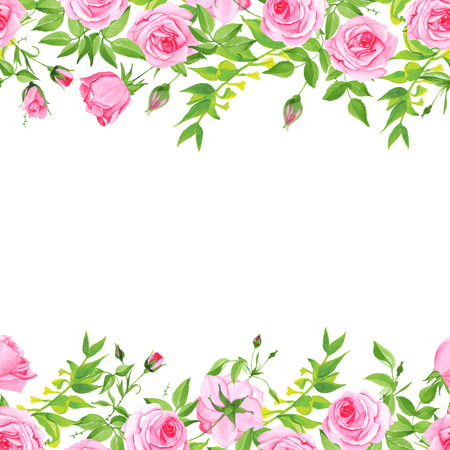 Delicate pink roses on white floral vector background