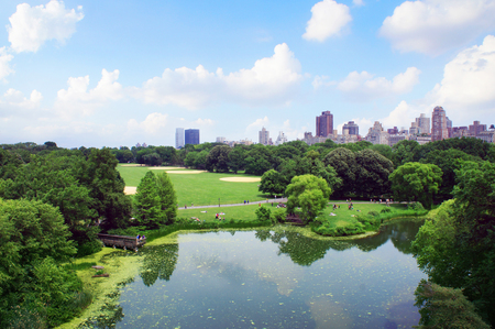 New York Central Park view from Belveder, United States