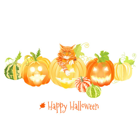 design objects: Cute Halloween pumpkins and red cat vector design objects. All elements are isolated and editable. Illustration