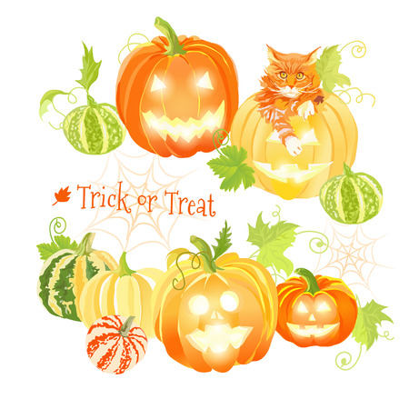 design objects: Orange Halloween pumpkins and red cat vector design objects. All elements are isolated and editable.
