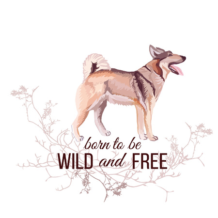 eskimo dog: Hunting dog vector design object. Wild and Free slogan. Typographic design artwork. All elements are isolated and editable.