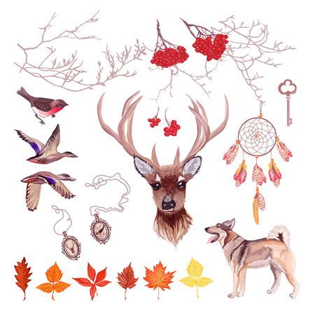 rowan tree: Autumn hunting vector design set. Rowan tree, deer, hunting dog, birds, bright leaves, lockets, dreamcatcher. All elements are isolated and editable. Illustration