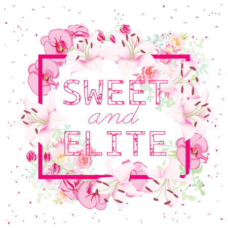 pink lily: Orchids, roses and lilies vector object. Cute square frame. Sweet and Elite slogan. Typographic design artwork. All elements are isolated and editable. Illustration