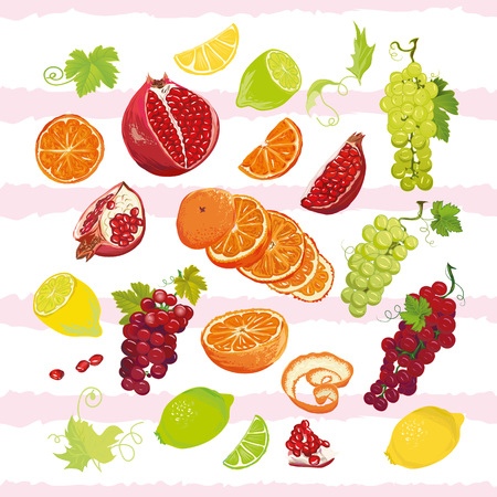 wholesome: Bright juicy fruits vector design set. All elements are isolated and editable.