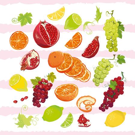 limon caricatura: jugosas frutas brillante dise�o conjunto de vectores. Todos los elementos est�n aislados y editables.
