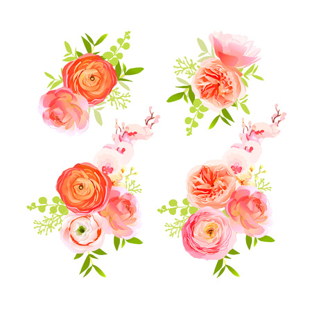 peachy: Peachy roses, ranunculus and exotic herbs bouquets vector design elements
