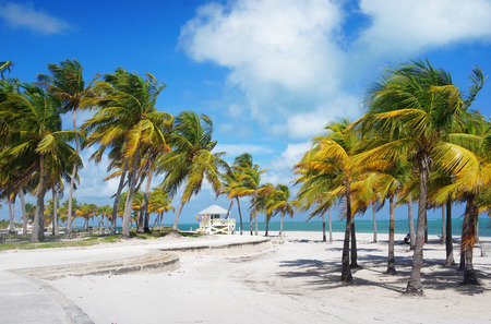 key biscayne: Crandon park Beach of Key Biscayne, Miami, USA Stock Photo