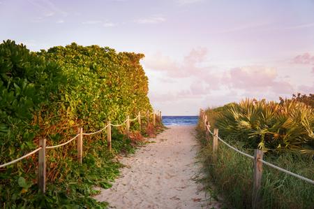 south beach: Lummus park view near South Beach, Miami, USA