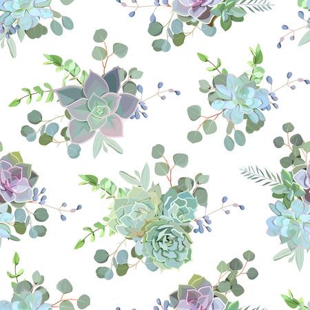 Impression de conception transparente colorée succulente verte Echeveria. Impression de cactus naturel dans un style funky moderne.