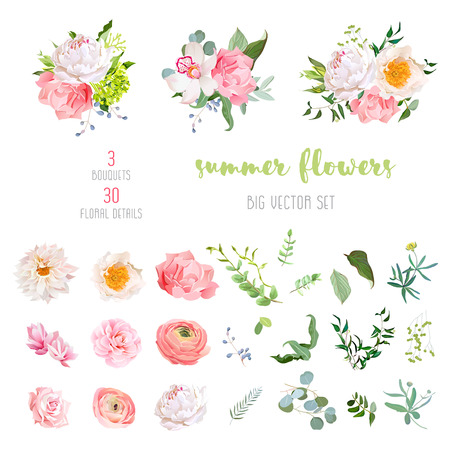 Ranunculus, rose, peony, dahlia, camellia, carnation, orchid, hydrangea flowers and decorative plants big vector collection. All elements are isolated and editable.