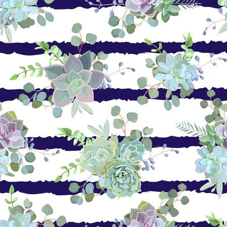 Vert coloré succulentes Echeveria seamless vecteur conception impression. motif de cactus naturel en style funky moderne. marine à rayures fond bleu.