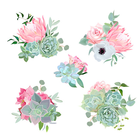 Stylish small bouquets of succulents, protea, rose, anemone, echeveria, hydrangea, green plants. Flower mix in modern style.