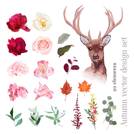 Autumn floral mix, reindeer head vector design set. Burgundy red, pink, white flowers. Peony, rose, alstroemeria lily, hydrangea, leaves and berries. All elements are isolated and editable.