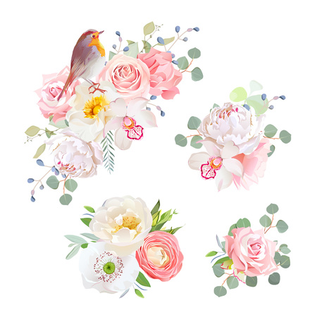 peachy: Spring delicate bouquets and cute robin bird vector design objects. Peachy and pink roses, peony, carnation, orchid, white poppy, ranunculus flowers, eucalyptus. All elements are isolated and editable