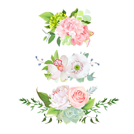 Stylish mix of horizontal spring bouquets vector design set. Rose, orchid, hydrangea, white peony, poppy, echeveria succulent, various plants, flowers and herbs. All elements are isolated and editable 矢量图像