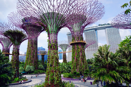 People walk in the Gardens by the Bay