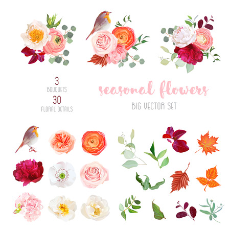 peachy: Mix of seasonal plants anf flowers big vector collection