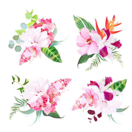 Delicate tropical floral bouquets of hibiscus, medinilla, orchid