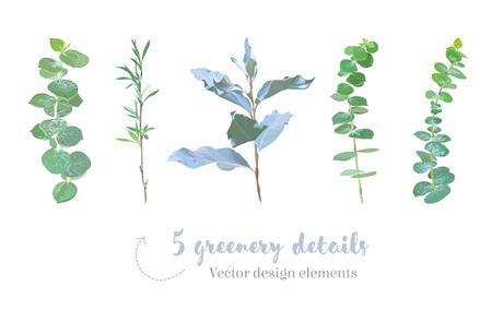 Mix of herbs and plants vector big collection Ilustração
