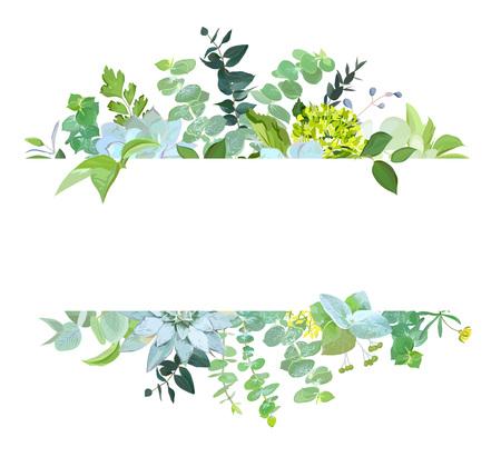Bannière de conception de vecteur botanique horizontal