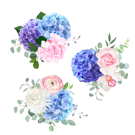 Blue, pink and purple hydrangea, orchid, rose, white chrysanthem Vectores