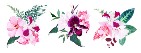 Exotic tropical floral bouquets of hibiscus, medinilla, paphiope