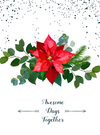 Seasonal banner frame with bouquet of red poinsettia, fir branch, emerald eucalyptus selection, salal on white dotted background. Christmas banner. Vector card. All elements are isolated and editable