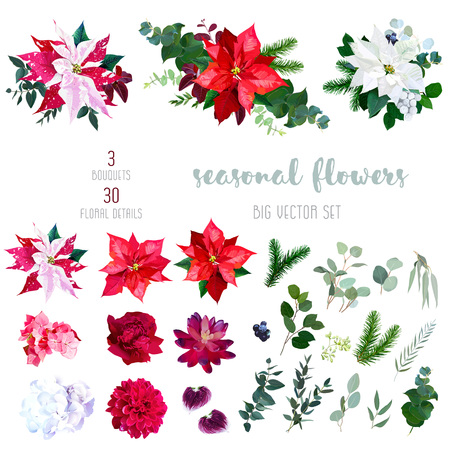Red, white and marbled poinsettia flowers, hydrangea, peony, dahlia, orchid, red succulent, fir branch and mix of seasonal plants and herbs big vector collection.All elements are isolated and editable Vektorové ilustrace