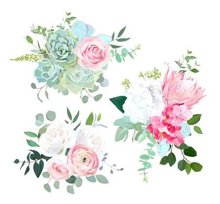 Protea rosa, ranúnculo, rosa, hortensia blanca, eucalipto sembrado, suculentos, ramos de diseño de vectores de vegetación. Hermosas flores de boda de verano Estilo acuarela. Todos los elementos están aislados y son editables.