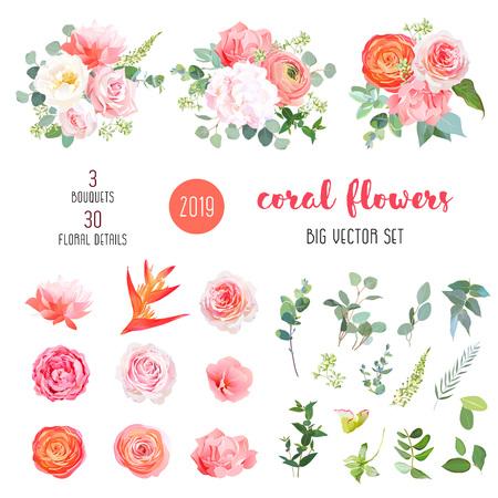 Jaskier pomarańczowy, różowa róża, hortensja, goździk koralowy, kwiaty ogrodowe, zieleń i rośliny ozdobne duży wektor zestaw. Żywa koralowa kolekcja w modnej kolorystyce 2019. Elementy są izolowane i edytowalne