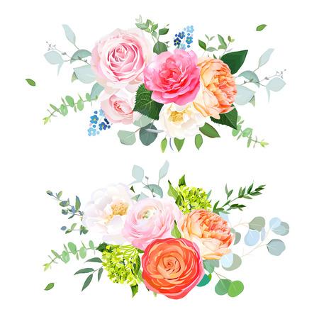 Różowa i magenta ogrodowa róża, koralowa róża Julii, pomarańczowy Jaskier, zielona hortensja, eukaliptus i zieleń wektor wzór bukiety poziome. Wiosenne kwiaty ślubne. Kwiatowy baner. Izolowany i edytowalny