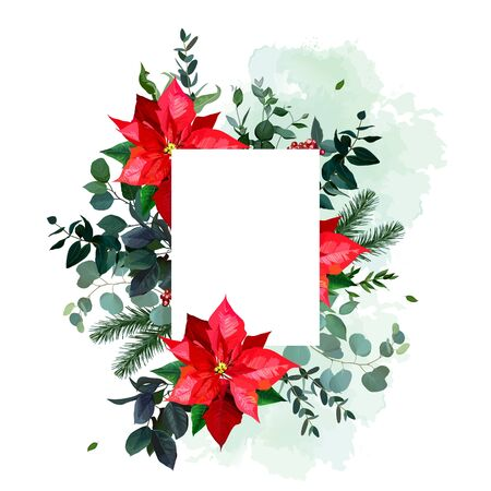 Red poinsettia flowers, christmas greenery, emerald eucalyptus, seasonal plants vector design frame. Winter chic wedding or new year party invitation card. All elements are isolated and editable