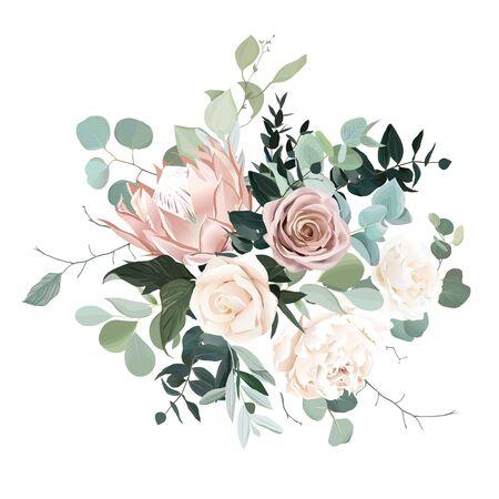 Sauge argentée et fleurs roses blush vector bouquet de conception. Protea beige, rose crémeuse et poussiéreuse, pivoine blanche ivoire, eucalyptus, verdure. Guirlande florale de mariage. Aquarelle pastel. Isolé et modifiable