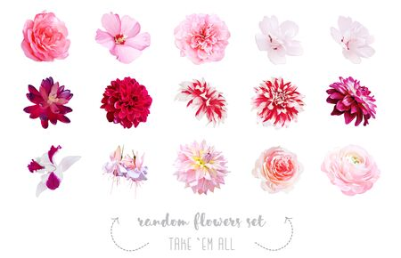 Watercolor style various flowers set. Coral, pink, fuchsia red, white colored. Vector illustration for simple, spring floral wedding design. Elegant decorations. Elements are isolated and editable Ilustrace