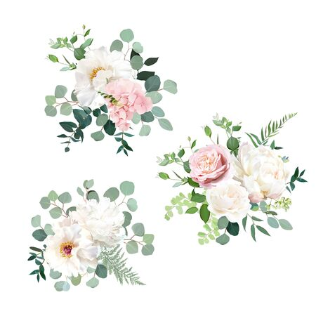 Blush pink rose and sage greenery, ivory peony, hydrangea, ranunculus flowers, eucalyptus vector floral bunches. Floral pastel watercolor style wedding bouquets. All elements are isolated and editable Vetores