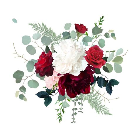 Classic red roses, white and burgundy peony, pink hydrangea, eucalyptus, fern, greenery wedding design bouquet. Luxury fall flowers vector. Autumn bunch of flowers. Elements are isolated and editable 向量圖像