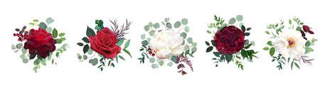 Burgundy red rose flowers, white ivory peony, carnation vector design 矢量图像
