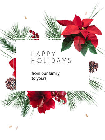 Emerald christmas greenery, red poinsettia, amaryllis Vektorové ilustrace