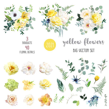 Beautiful various type of flowers on white