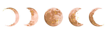 Beige and gold moon phases vector design set