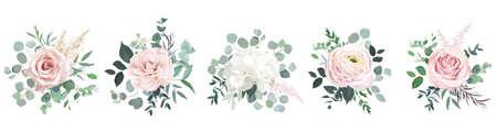 Blush pink roses, ranunculus, camellia, white hydrangea vector design bouquets. 일러스트