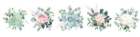 Green colorful succulent bouquets vector design objects. 일러스트