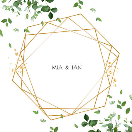 Herbal minimalist vector watercolor greenery design frame
