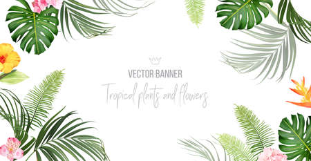 Tropical banner arranged from exotic emerald leaves and exotic flowers 일러스트