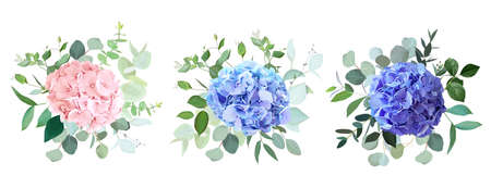 Blue, purple, blush pink hydrangea flowers, emerald greenery and eucalyptus wedding vector bouquets set