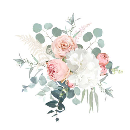 Blush pink garden roses, ranunculus, hydrangea flowers vector design bouquet