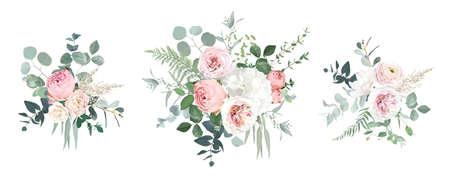 Blush pink garden roses, ranunculus, hydrangea flowers vector design bouquets 스톡 콘텐츠