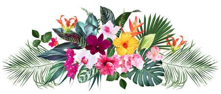 Exotic tropical flowers, orchid, strelitzia, hibiscus, bougainvillea, gloriosa, palm, monstera leaves vector design bouquet 일러스트