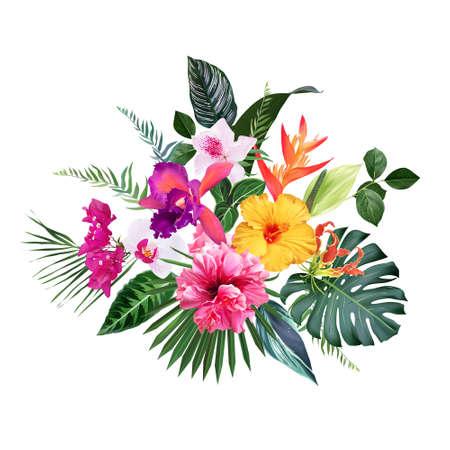 Exotic tropical flowers, orchid, strelitzia, hibiscus, bougainvillea, gloriosa, palm
